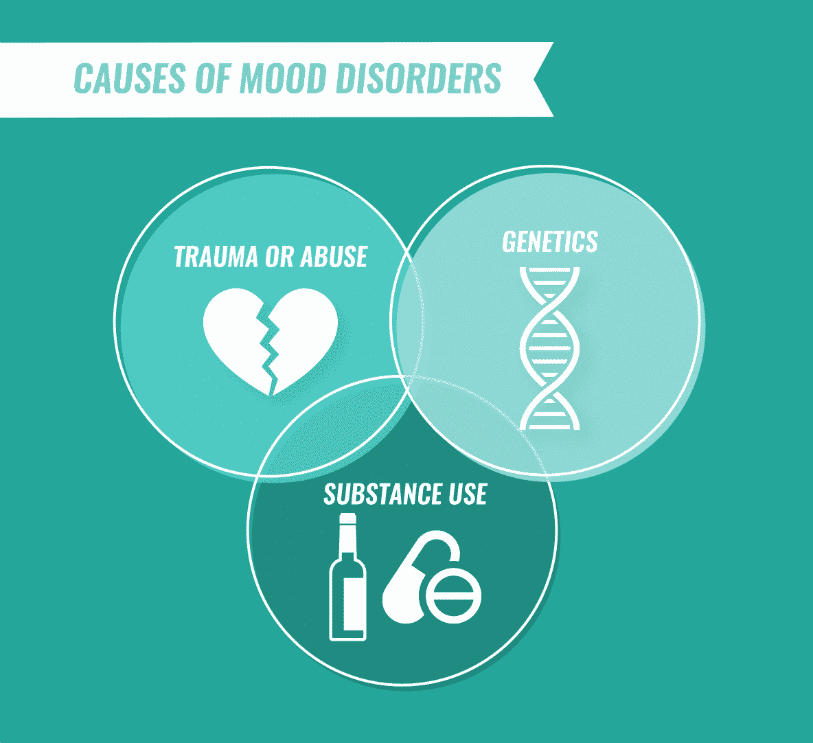 causes of mood disorders infographic