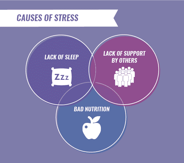 causes of stress infographic