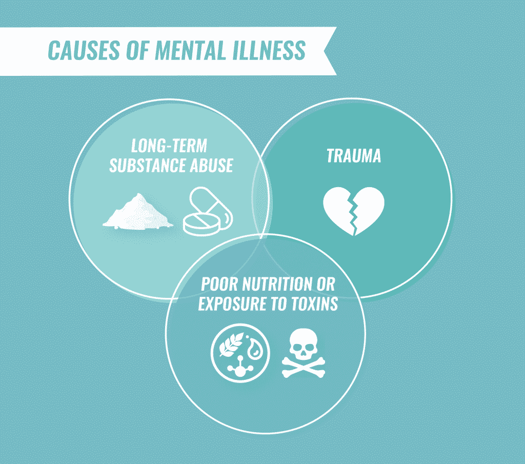 causes of mental illness infographic