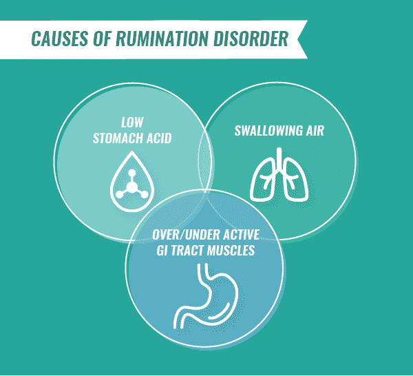 Venn diagram inforgraphic of the causes of rumination disorder