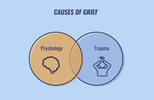 causes of grief infographic
