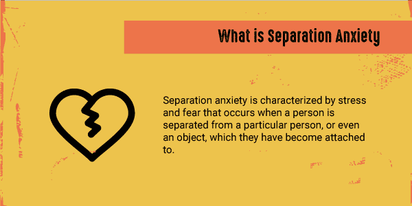 what is separation anxiety infographic
